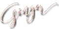 The ginger Companies logo icon Ginger flesher Sonnier