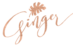 GINGER Companies logo small.png