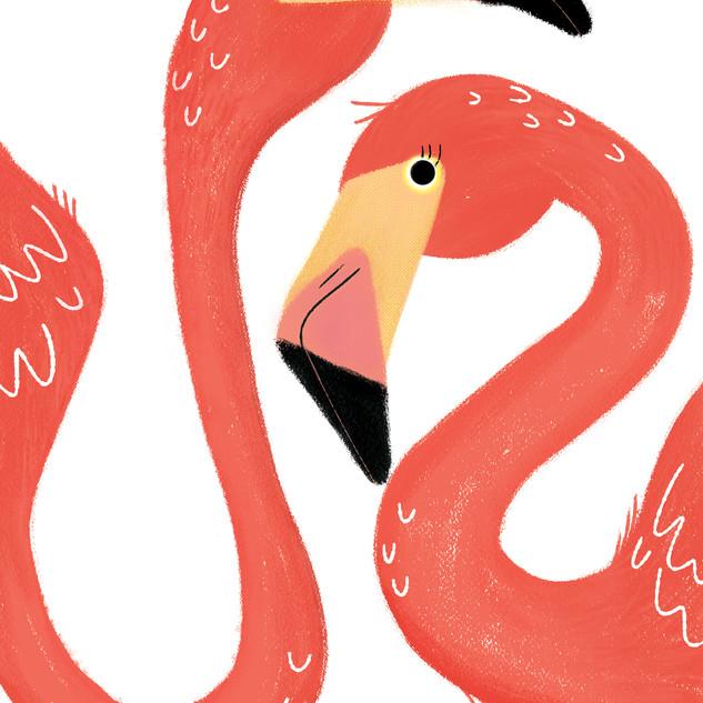 Flamingo Shake
