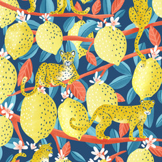 Leopards and Lemons