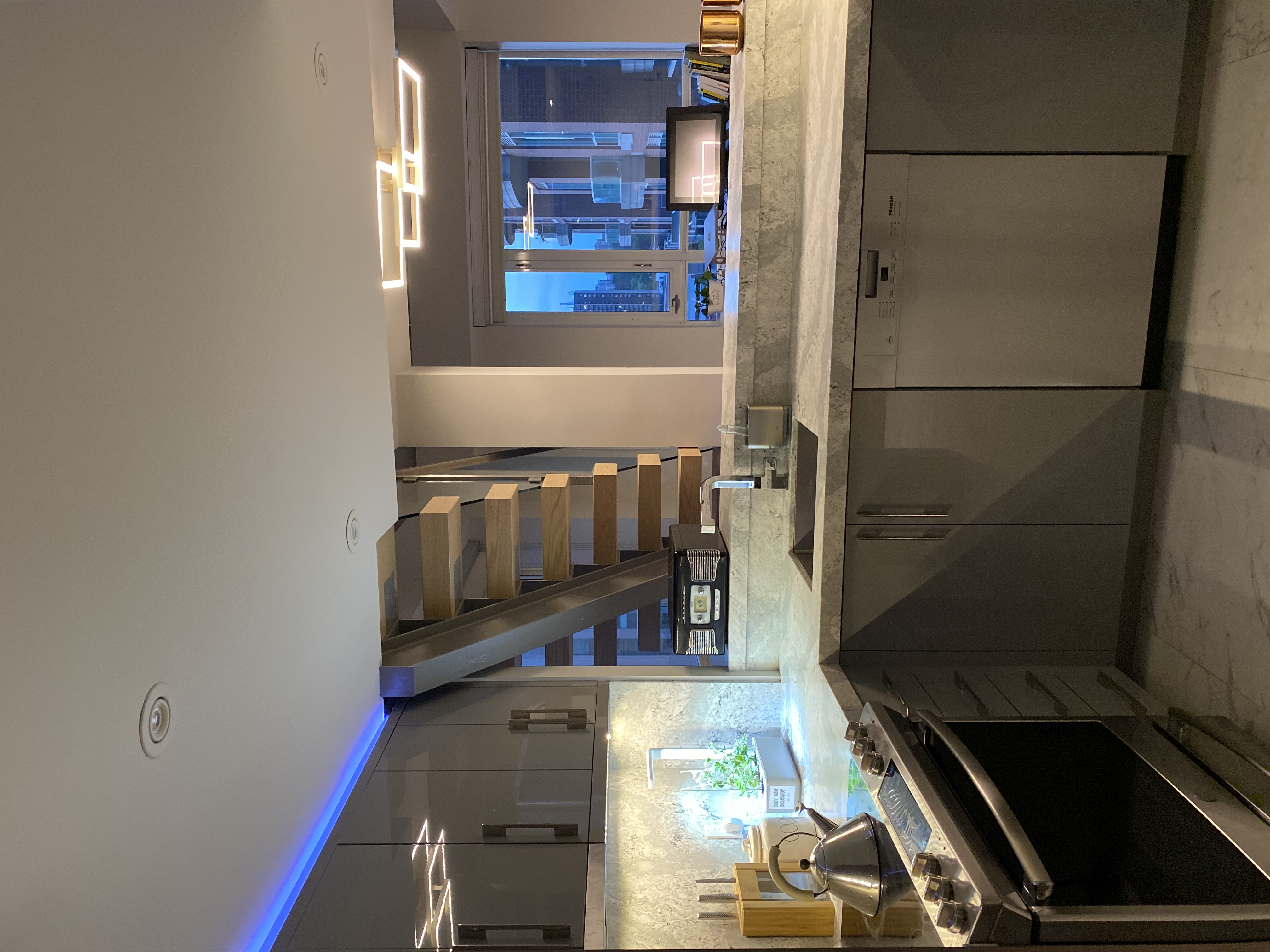 Toronto Condo Kitchen