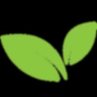 לוגו של טופ לייזר