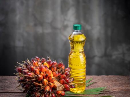 Sludge Palm Oil