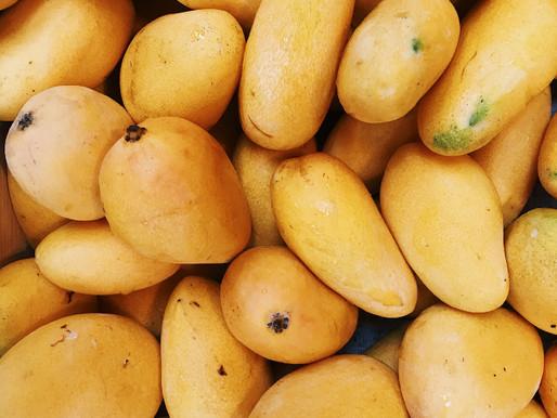Mulgoba Mangoes