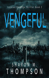 vengeful_Book 2 new.jpg