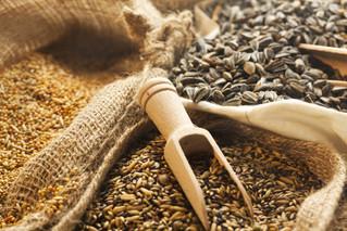 Grains & Concentrates