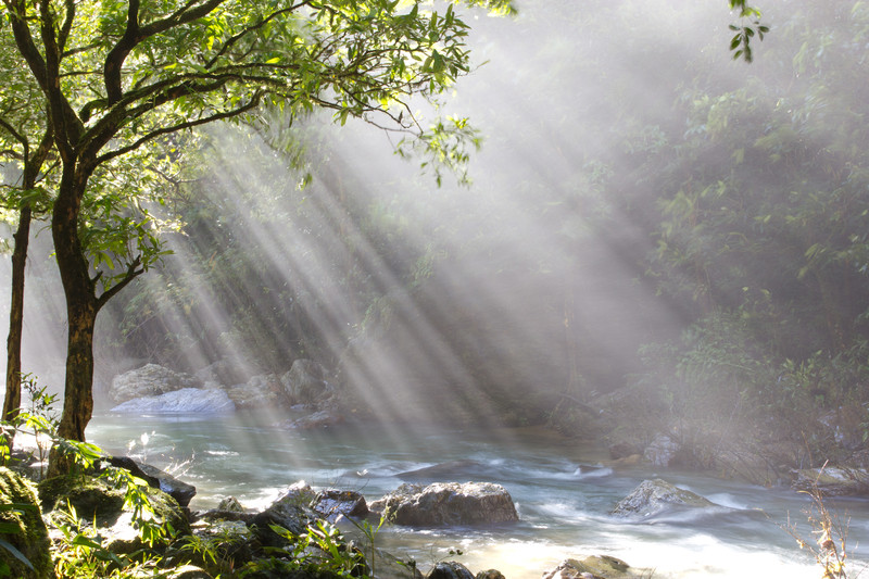 "&copy; Starytale | Dreamstime.com - <a  data-cke-saved-href=""https://www.dreamstime.com/stock-photo-god-beams-image21642940#res8623211"" href=""https://www.dreamstime.com/stock-photo-god-beams-image21642940#res8623211"">God beams</a>"