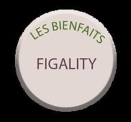 Bouton figality.png