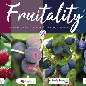 akilux-fruitality.jpg
