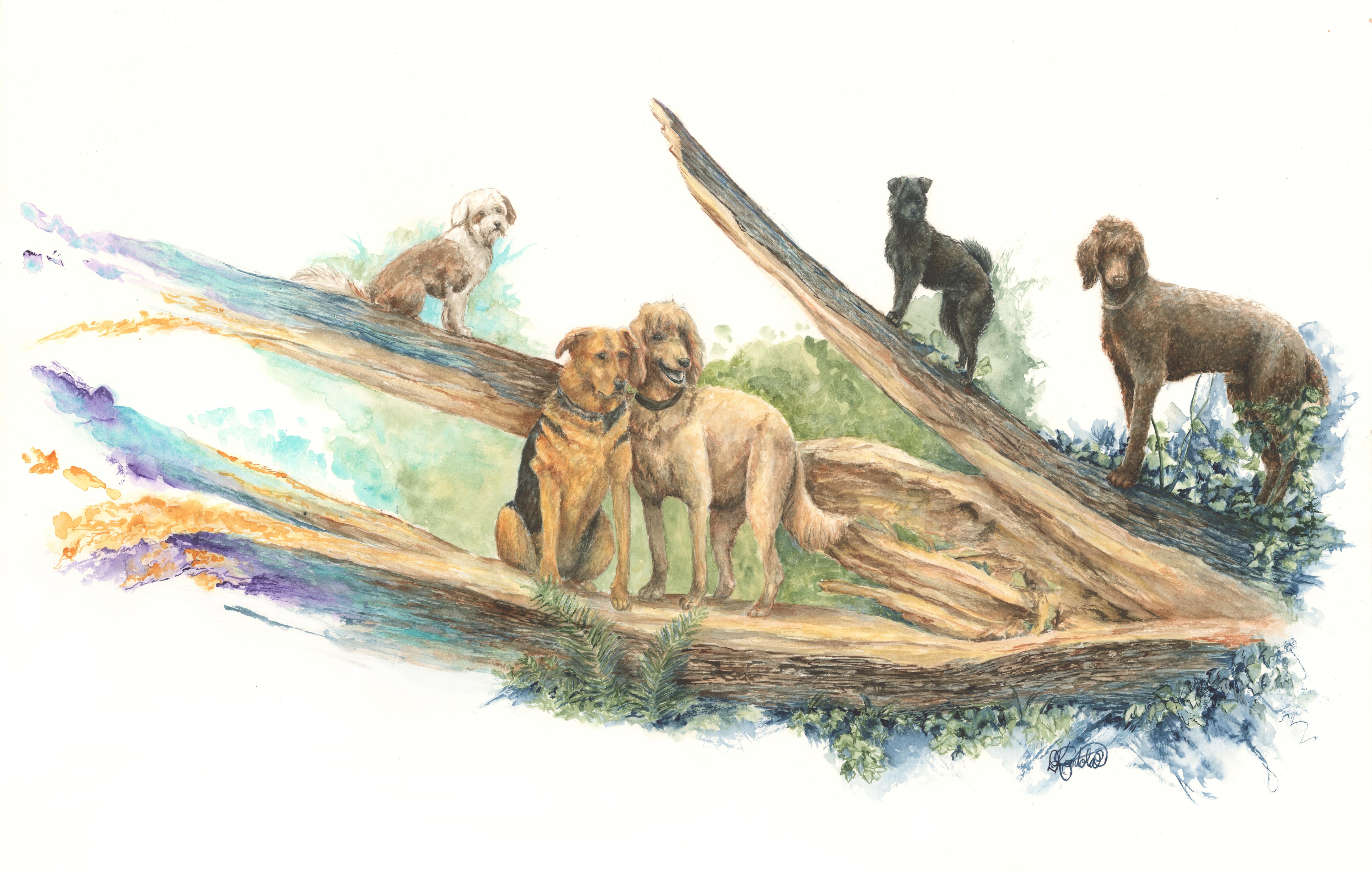 Parcour Dogs
