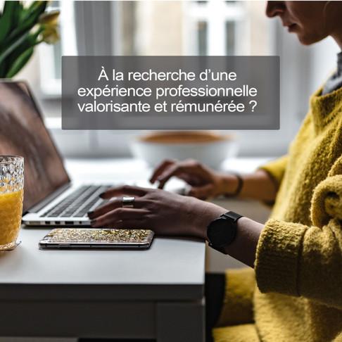 STRATÉGIE CONSEIL ISTC RECRUTE DES CONSULTANTS !