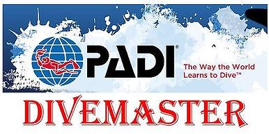 PADI-Divemaster.jpg