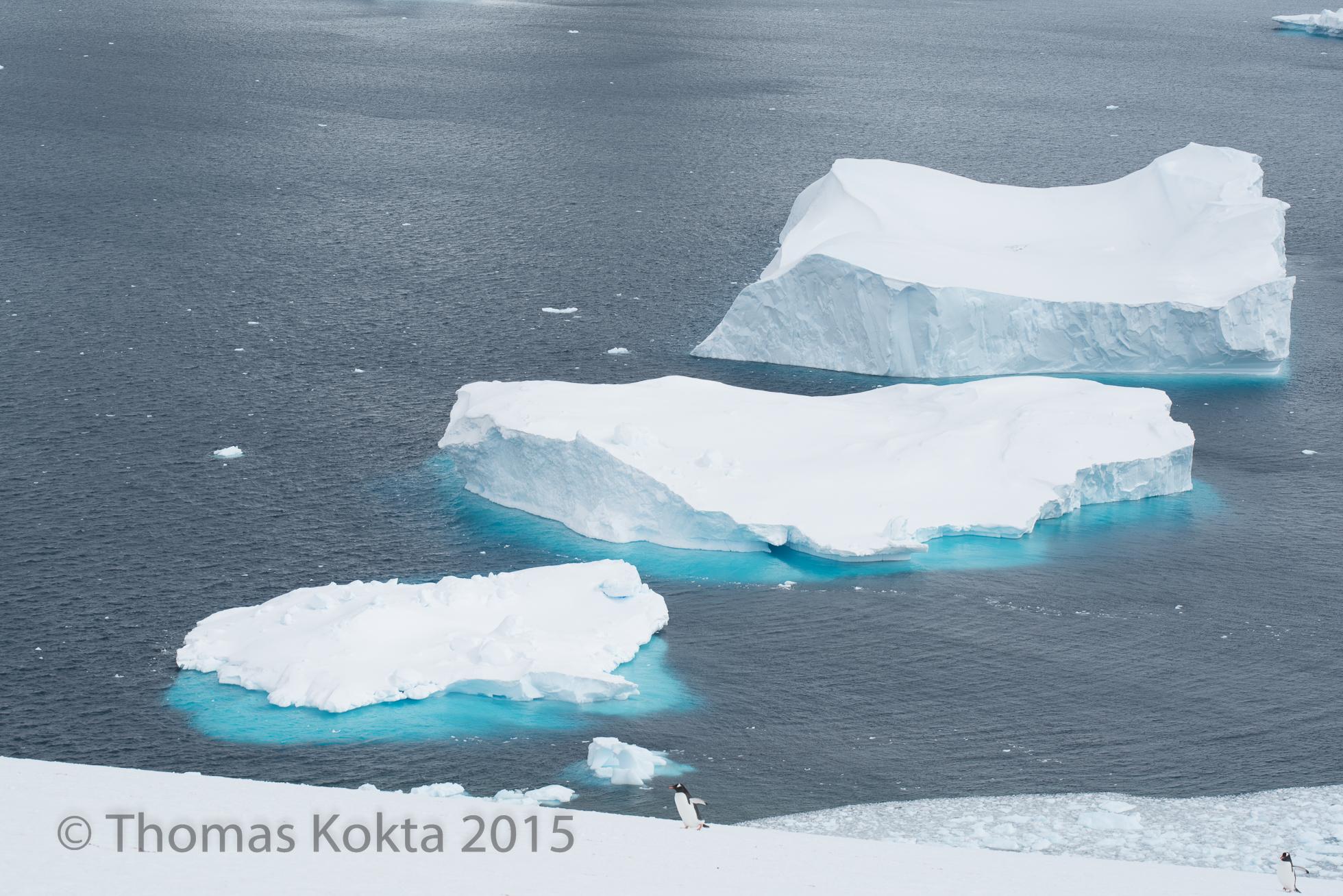 Antarctica3.jpg
