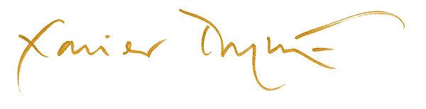 xd signature.jpg
