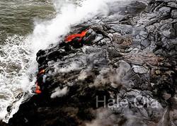 #hawaii #haleola #lomilomi #bigisland #lomilomi