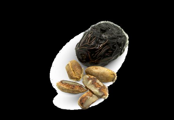 Ajwa Date & Seeds.png