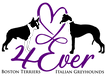 4Ever logopurple HD.png