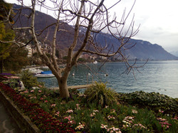Montreux petit train - Automne
