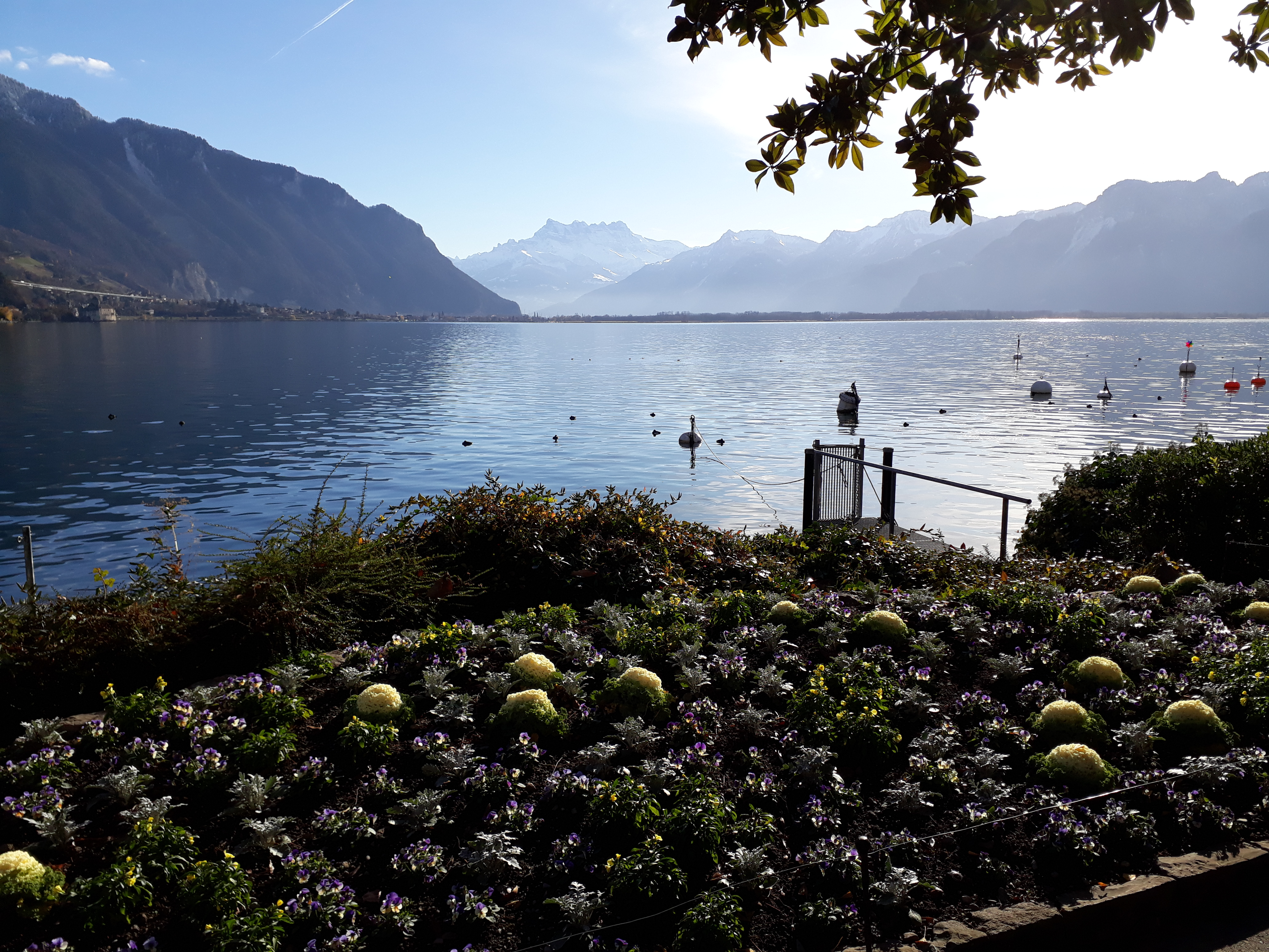 Montreux petit train - Printemps