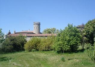 Autour du château du Vergier - Famille de Chabannes