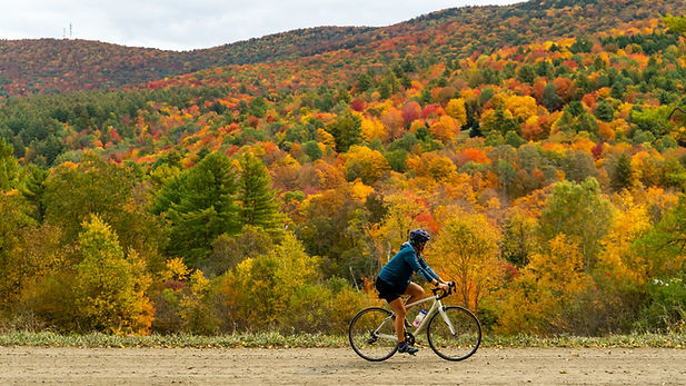 A photo fo a girl riding her bike during fall foliage.