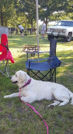 Addie camping at Pomme de Ridge
