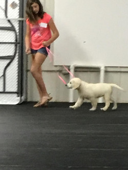 Puppy Soc Class with Karley