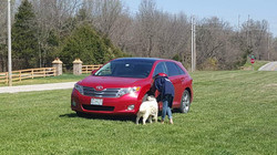 Karley and Elsa doing a vehicle search