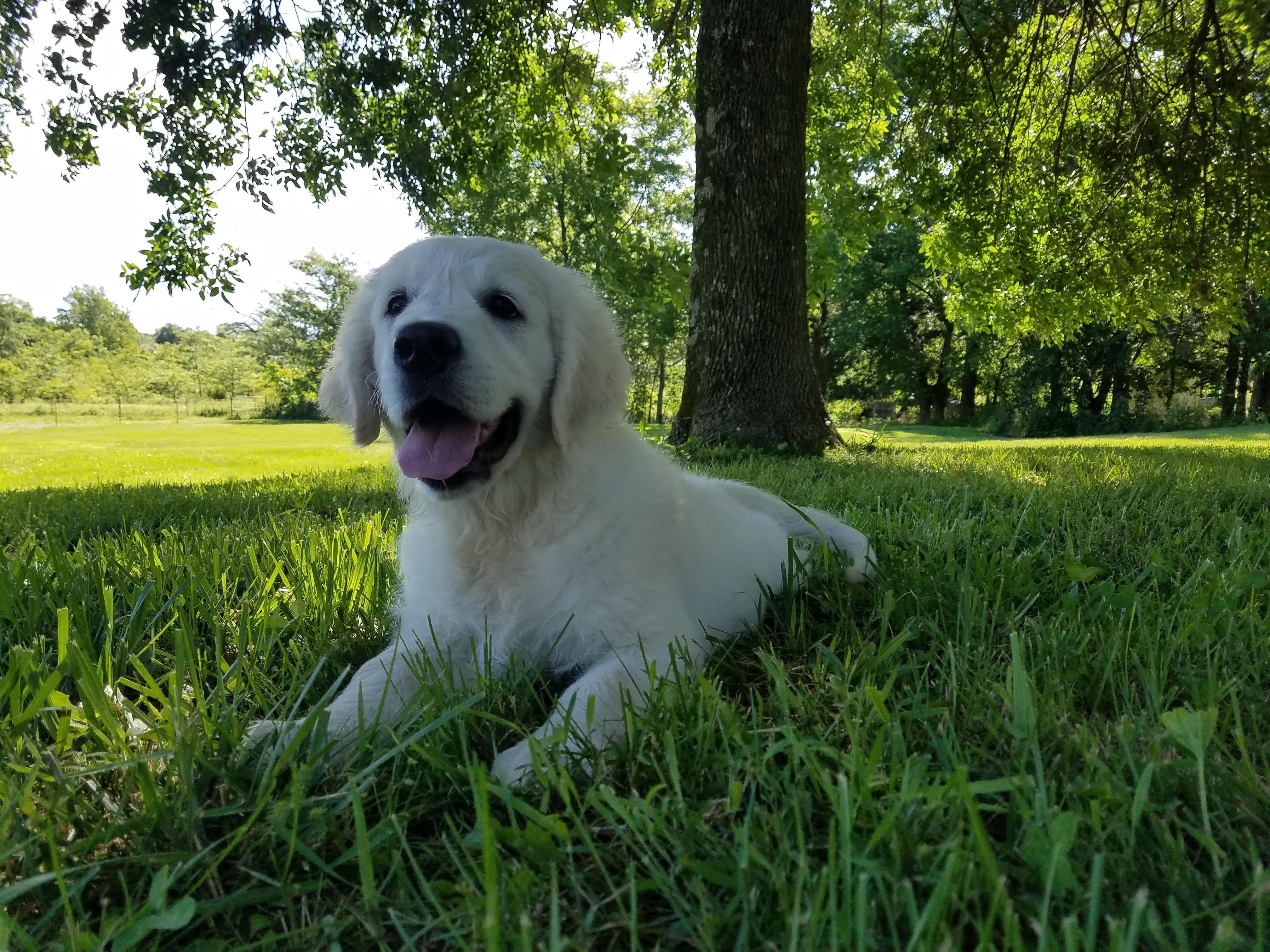 Baby smiley Flynn