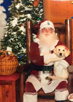 SMG Puppy with Santa