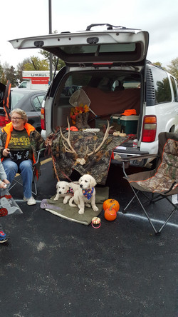Trunk or Treat Benelli and Daisy 2