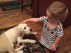 Finn (Addie and Chase puppy)