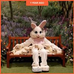 Easter Bunny time!