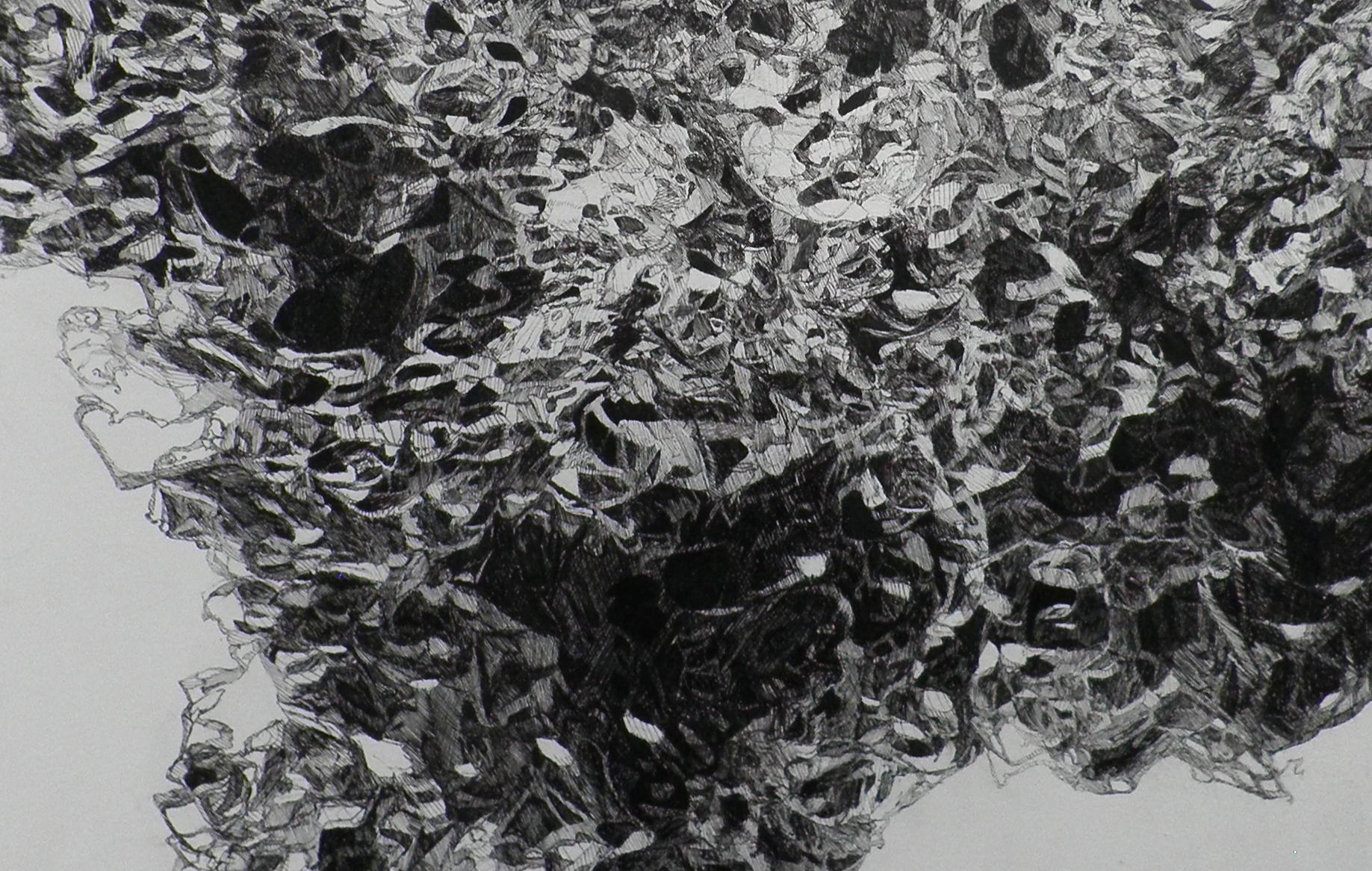 Asli (detail)
