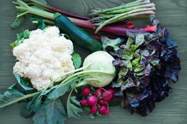 4. 葉野菜をベースにしたケトジェニックダイエット