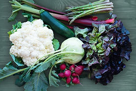 organic vegetables tallahassee