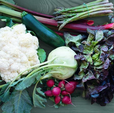 Spring/Summer - Vegetables