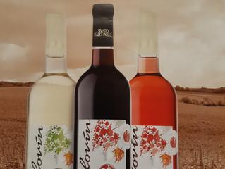 """Přátelé, vážení hosté, v letošním roce otvíráme """"Svatomartinské víno"""" již v pátek 8.11., v"""