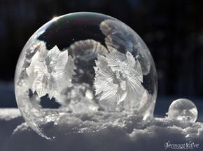 Flower Frozen Bubble