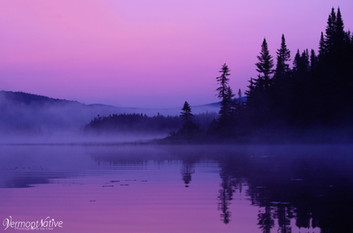 Pink Foggy Morning
