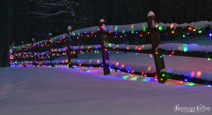 Lights on Fence Under Snow