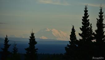 Alaska Range at Sunset with Trees