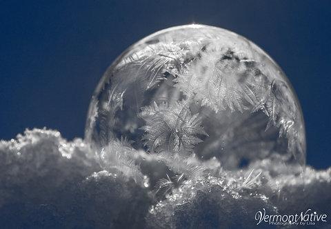 Crystallizing Bubble