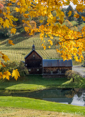 Vermont Farm in Fall