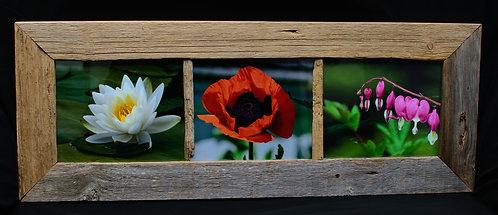 Flower Collage  Barnwood Frame
