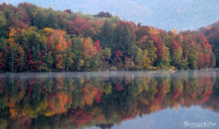 Autumns Reflections