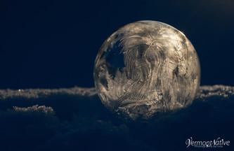 Elegant Bubble