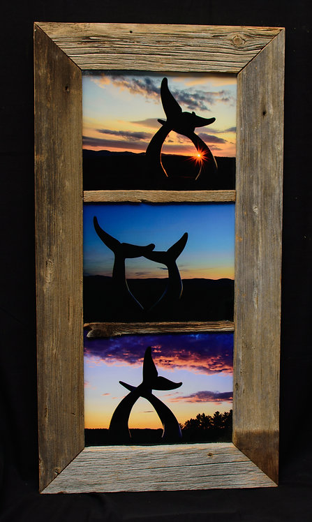Whale Tail  Barnwood Frame