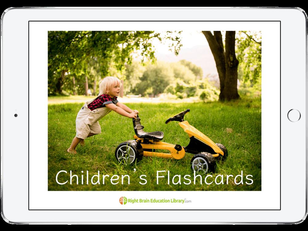 Shichida Flashcards