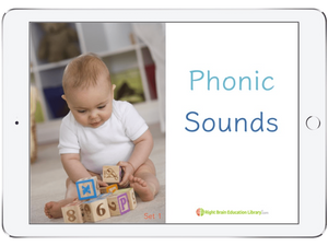 Phonics Reading Flash Cards for babies